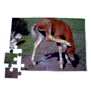 Photo Jigsaw Puzzles